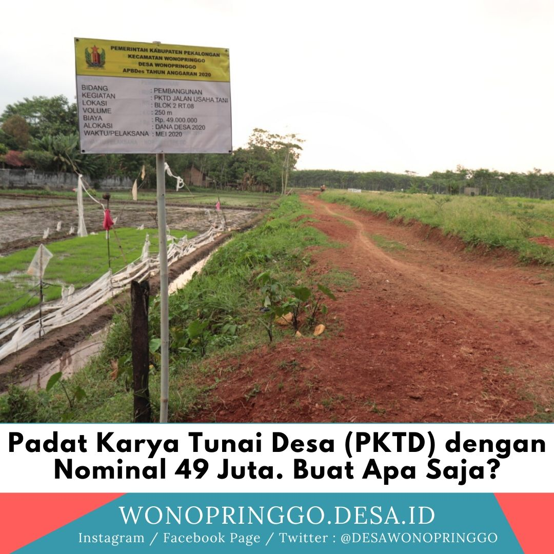 PKTD Desa Wonopringgo